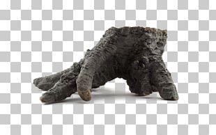 Fur PNG