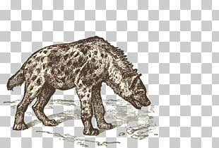 Striped Hyena Sticker Decal Table-glass PNG