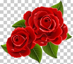 Rose Heart Love Valentine's Day PNG