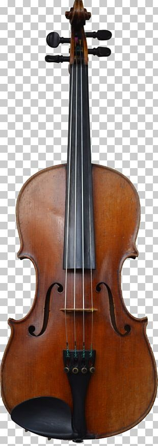 Cello Violin Family Musical Instrument Viola PNG