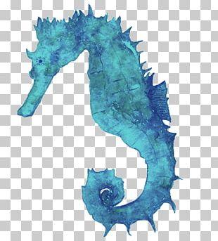Seahorse Watercolor: Animals Watercolor Painting Art PNG