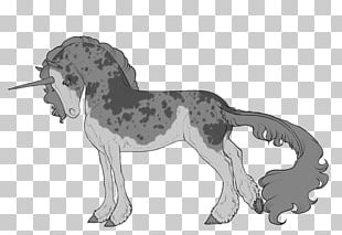 Appaloosa Mustang Dog Breed Cat Pony PNG