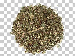 Nilgiri Tea Herb Organic Food Hōjicha PNG
