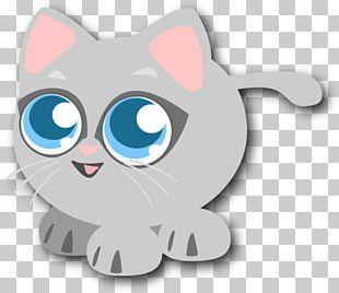 Cat Kitten Felidae Drawing PNG