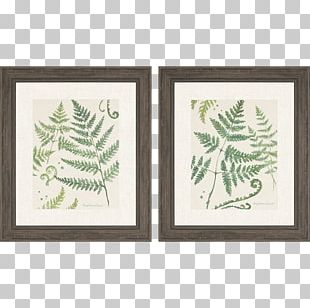 Frames Printmaking Graphic Arts Canvas PNG