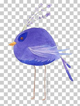 Bird Watercolor Painting Illustration PNG