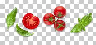 Bush Tomato Diet Food Basil PNG