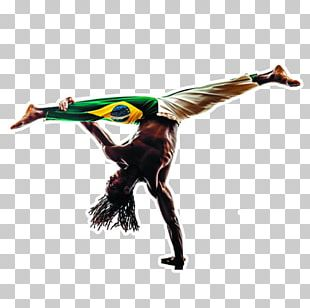 Capoeira Martial Arts Stock Photography Shutterstock PNG