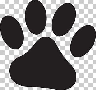 Lion Dog Tiger Paw Puppy PNG