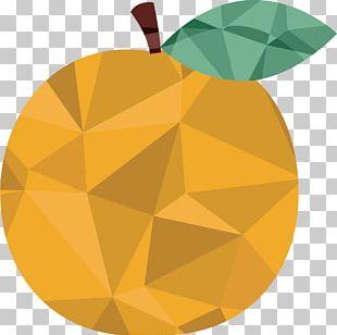 Orange Auglis Fruit PNG