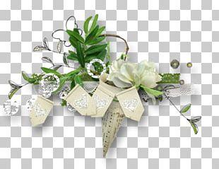 Portable Network Graphics Flower Floral Design Ornament PNG