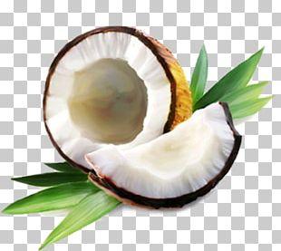 Coconut Water Coconut Oil Coconut Milk PNG