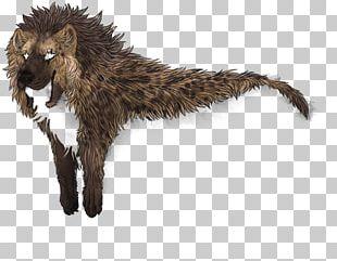 Striped Hyena Cat Fur Lion PNG