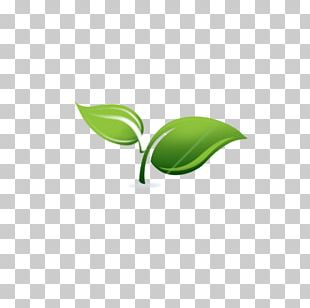 Spring Framework Spring & Sprout Support Services PNG