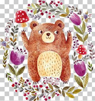 Brown Bear Drawing Illustration PNG