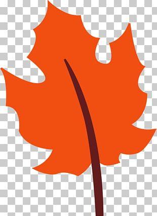 Open Autumn Leaf Color PNG