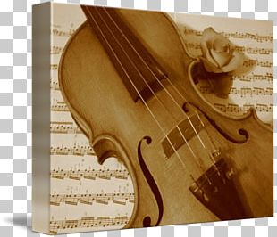 Violin Musical Instruments String Instruments Cello PNG