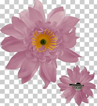 Rintaneula Transvaal Daisy Clothing Accessories Jewellery Woven Fabric PNG