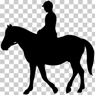Jockey Silhouette Horse English Riding PNG