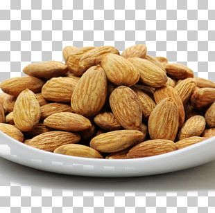 Nut Almond Apricot Kernel Eating Food PNG