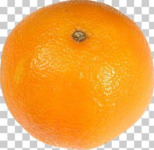 Mandarin Orange Tangerine Tangelo Vegetarian Cuisine Meyer Lemon PNG