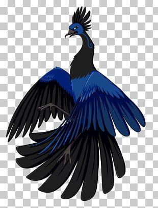 Bird Beak Feather Wing Cobalt Blue PNG