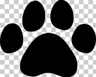 Dog Paw Cat Giant Panda PNG