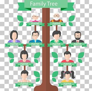 Family Tree Genealogy Generation PNG
