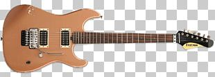 Steel-string Acoustic Guitar String Instruments Classical Guitar PNG