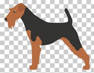 Kerry Blue Terrier Scottish Terrier Toy Fox Terrier Bedlington Terrier Smooth Fox Terrier PNG