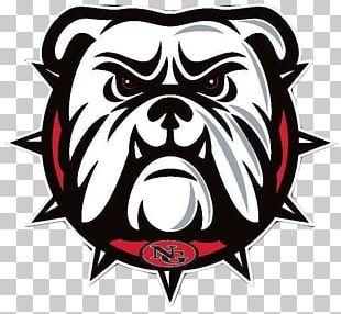 McKinney North High School Bulldog North Dallas High School
