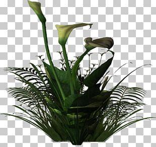 Floral Design Flowerpot Cut Flowers Plant Stem Houseplant PNG