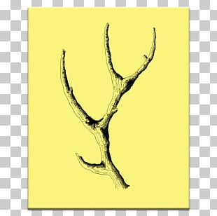 Graphic Arts Antler Canvas PNG
