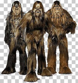 Chewbacca Star Wars PNG