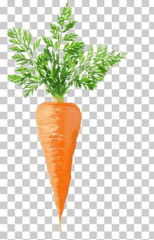 Juice Carrot Cake Stock Photography Vegetable PNG