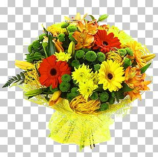 Transvaal Daisy Flower Bouquet Chrysanthemum Rose PNG