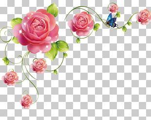 Garden Roses Beach Rose Flower Pink PNG