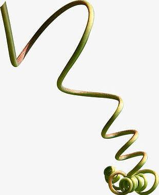 Twig PNG
