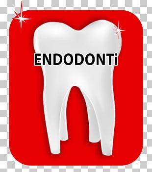 Estetik Ağız Ve Diş Sağlığı Polikliniği Human Tooth Dentistry Aesthetics PNG