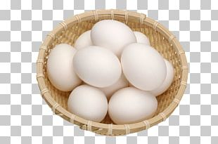 Chicken Egg No Egg White PNG