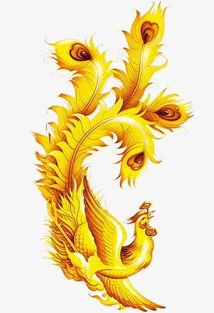 Hand Painted Golden Peacock PNG