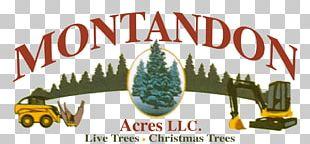 Logo Michigan State University Banner Tree Brand PNG