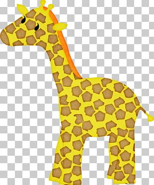 Giraffe Neck Terrestrial Animal Wildlife PNG