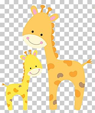 Koala Infant Baby Shower Illustration PNG