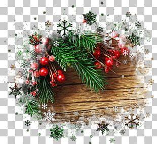 Fir Christmas Ornament Christmas Day Santa Claus Christmas Tree PNG