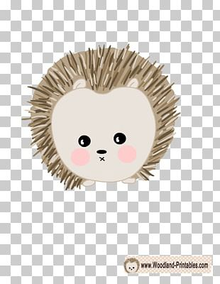 Hedgehog Foal Paper Wall Decal Sticker PNG