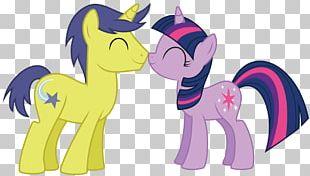 Pony Twilight Sparkle Rainbow Dash Comet Tail PNG