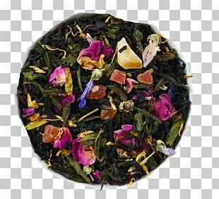 Green Tea Oolong Sencha Gunpowder Tea PNG