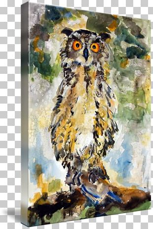 Great Horned Owl Watercolor Painting Gallery Wrap PNG