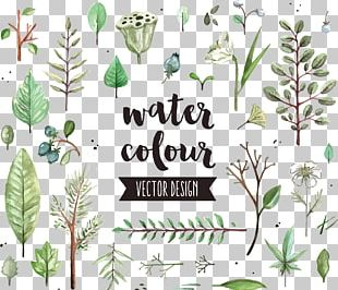 Watercolor Painting Leaf Icon PNG